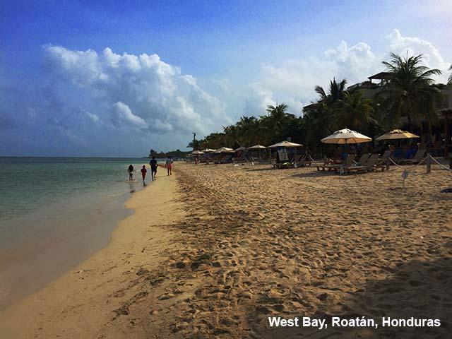 Tropical beach with sunny sky and plapapas